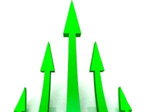 Business Options; Wilde Success; Carmen Wilde; Business Growth